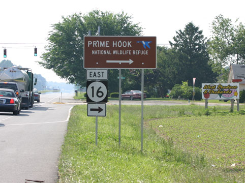 [Link to Prime Hook National Wildlife Refuge]